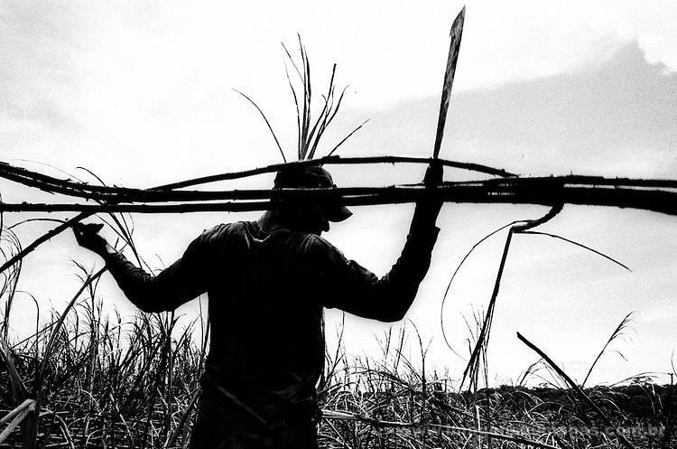 Índio trabalhando em usina de cana de açúcar no Mato Grosso do Sul, MS..Indian working at plant of cane of sugar in Mato Grosso do Sul, MS..Índio trabalhando em usina de cana de açúcar no Mato Grosso do Sul, MS..Indian working at plant of cane of sugar in Mato Grosso do Sul, MS.