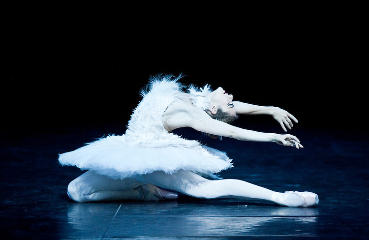 "English National Ballet. ""Ballet Russes"" season at Sadlers Wells Theatre. ""Dying Swan"". Tutu designed by Karl Lagerfeld for Chanel."