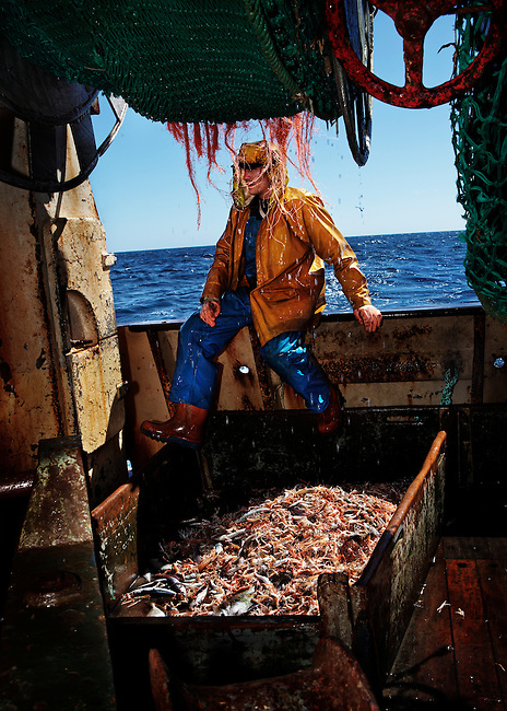 Carl Schryer, fisherman, working at sea aboard the trawler 'Risten', whose home port is Le Guilvinec, France. <br />