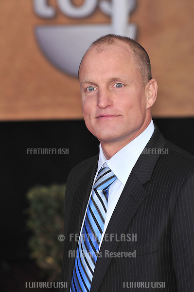 Woody Harrelson at the 14th Annual Screen Actors Guild Awards at the Shrine Auditorium, Los Angeles, CA..January 27, 2008  Los Angeles, CA..Picture: Paul Smith / Featureflash