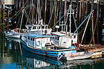 Fishing boats docked at Head Harbor, Campobello, New Brunswick, Canada