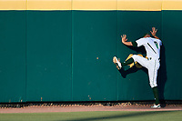 USF Bulls starting pitcher Shane McClanahan (8) stretches in the outfield before a game against the UConn Huskies on March 23, 2018 at USF Baseball Stadium in Tampa, Florida.  UConn defeated USF 6-4.  (Mike Janes/Four Seam Images)