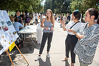 Kate Dinauer, Work<br /> 2018 InternLA student participants share their poster presentations about their summer experiences working as interns in Los Angeles. Summer Experience Expo, Sept. 13, 2018 in the Academic Quad. Hosted by Career Services.<br /> (Photo by Marc Campos, Occidental College Photographer)