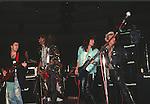 Dweezil Zappa, TM Stevens,  Phil Soussan, Billy Idol