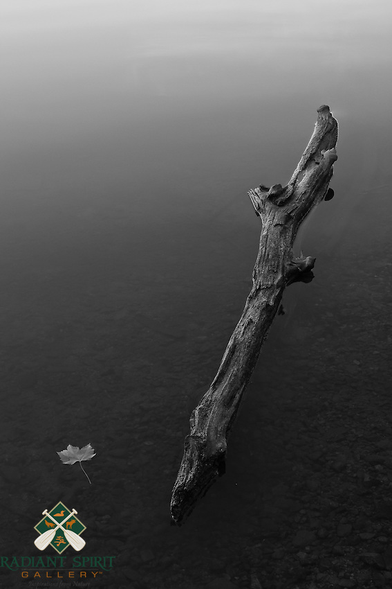 &quot;Of Summers Past&quot;<br />
