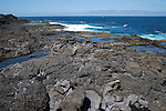 Atlantic coast at Los Charcones, Caleta Negra bay, near Playa Blanca, Lanzarote, Canary islands, Spain