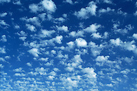 Altocumulus castellanus (ACCAS) clouds pepper the sky over Amarillo Texas. These clouds are indicative of mid-level instability which could aid in the development of thunderstorms.