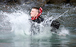 Kevin Morgan hits the water after jumping from a bridge into the Burley Lagoon in Olalla, Washington on 1 January  2010. Over 300 hardy participants  braved the chilly lagoon waters to join in on the annual New Year's Day Tradition.  Jim Bryant Photo. ©2010. ALL RIGHTS RESERVED.