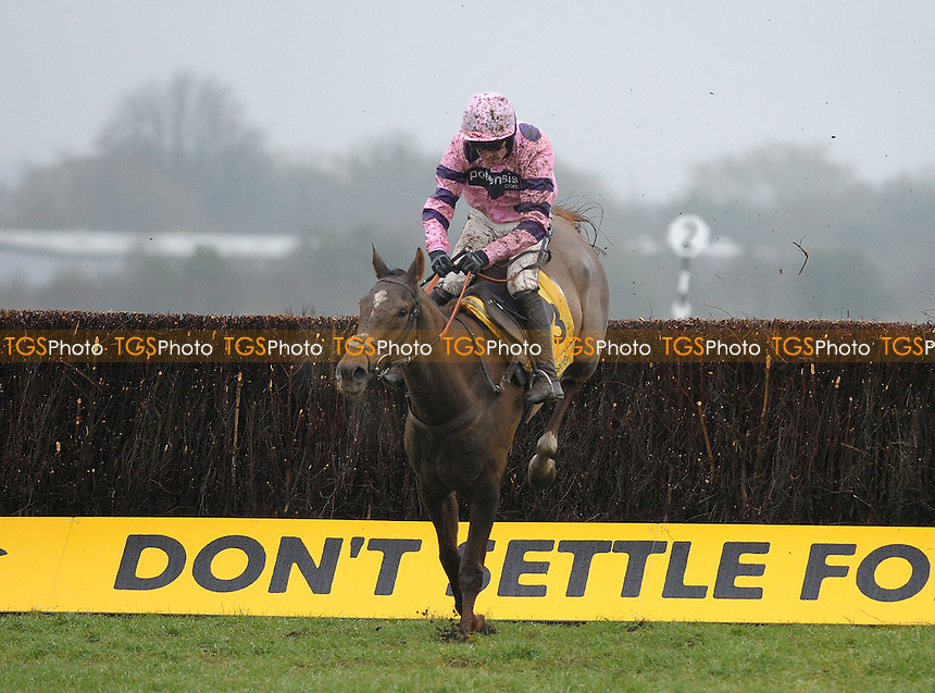 Silviniaco Conti ridden by Ruby Walsh jumps the last and goes on to win the Betfair Denman Chase Grade 2 Cl1 - Horse Racing at Newbury Racecourse, Newbury, Berkshire - 09/02/2013 - MANDATORY CREDIT: Martin Dalton/TGSPHOTO - Self billing applies where appropriate - 0845 094 6026 - contact@tgsphoto.co.uk - NO UNPAID USE.