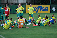 São Paulo SP,26.07.2016 - FUTEBOL - PALMEIRAS -  Jogadores durante treino do Palmeiras no CT Palmeiras na região oeste da cidade de São Paulo nesta Terça-Feira,26 (Foto: Carlos Pessuto/Brazil Photo Press)