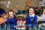 Bláithín Nic a tSíthigh, Síomhna Ní Hainiféin, (Sésta Óraiste), students from Pobalscoil Chorcha Dhuibhne, Dingle, pictured at the final of the Kerry County Council Annual Student Enterprise Awards at IT Tralee, North Campus on Friday last.