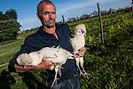 Venezia - Isola di SantErasmo. 'Enzo con le sue galline padovane. <br /> Venice - Sant' Erasmo Island. Renzo, farmer with your &quot;galline padovane&quot;.