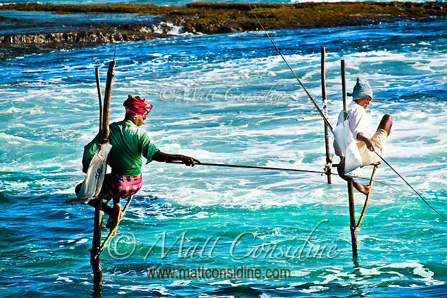 Stick fishermen on their awkward perches.<br /> (Photo by Matt Considine - Images of Asia Collection)
