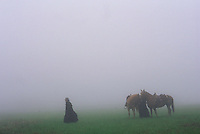 Ghostly riders in the fog talk through a wet field as the wagon train halts for a break during an annual reenactment of a westering caravans for the Pike festival, although the first settlers didn't stop for fast food coffee along their route.