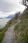 Hiking Trail near Lago Grey in Torres del Paine National Park in Patagonia Chile