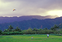 Kite flying at Sandy Beach with the Koolau mountains in the background