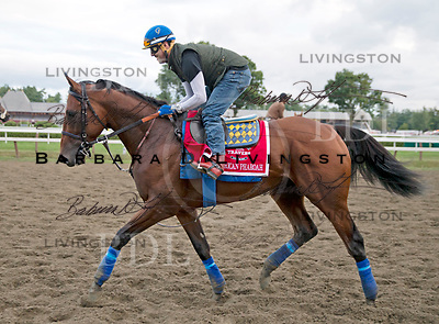 American Pharoah, Pioneerof the Nile - Littleprincessemma