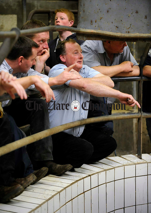 Bidders do their business at the ring-side during the Ennis Mart Show and Sale for weanling Belgian Blues and Limousins. Photograph by John Kelly.
