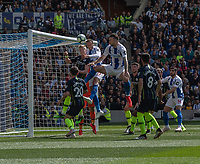 Brighton & Hove Albion's Glenn Murray scores the opening goal<br /> <br /> Photographer David Horton/CameraSport<br /> <br /> The Premier League - Brighton and Hove Albion v Manchester City - Sunday 12th May 2019 - The Amex Stadium - Brighton<br /> <br /> World Copyright © 2019 CameraSport. All rights reserved. 43 Linden Ave. Countesthorpe. Leicester. England. LE8 5PG - Tel: +44 (0) 116 277 4147 - admin@camerasport.com - www.camerasport.com