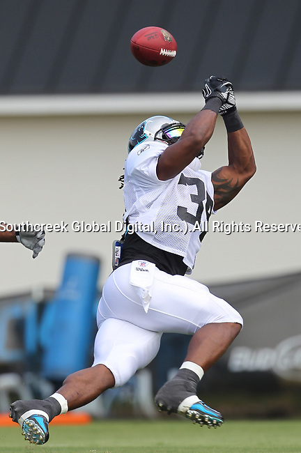 30July2010: The Panthers held an afternoon training camp session at Wofford College in Spartanburg, South Carolina.