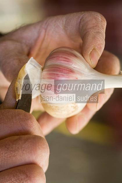 Europe/France/Midi-Pyrénées/81/Tarn/Lautrec: Mr Tournier Producteur d' ail rose de Lautrec prépare ses tresses d'ail