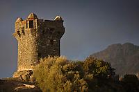 Europe/France/Corse/2B/Haute-Corse/Cap Corse/Nonza: La Tour paoline