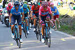 Maglia Rosa Richard Carapaz (ECU) comes by team mate Mikel Landa Meana (ESP) Movistar Team, with Pello Bilbao (ESP) Astana Pro Team and Vincenzo Nibali (ITA) Bahrain-Merida behind during Stage 20 of the 2019 Giro d'Italia, running 194km from Feltre to Croce d'Aune-Monte Avena, Italy. 1st June 2019<br /> Picture: POOL/Luca Bettini/BettiniPhoto | Cyclefile<br /> <br /> All photos usage must carry mandatory copyright credit (© Cyclefile | Luca Bettini/BettiniPhoto)