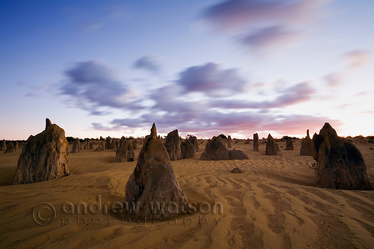 The limestone pillars of the Pinnacles Desert at dawn.  Nambung National Park, Cervantes, Western Australia, AUSTRALIA.