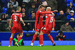 Leicester's Esteban Cambiasso celebrates scoring his sides second goal - Everton vs. Leicester City - Barclay's Premier League - Goodison Park - Liverpool - 22/02/2015 Pic Philip Oldham/Sportimage