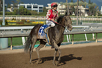 ARCADIA, CA  APRIL 7:  #3 Midnight Bisou, ridden by Mike Smith, return to the connections after winning the Santa Anita Oaks (Grade l) on April 7, 2018, at Santa Anita Park in Arcadia, Ca. (Photo by Casey Phillips/ Eclipse Sportswire/ Getty Images)