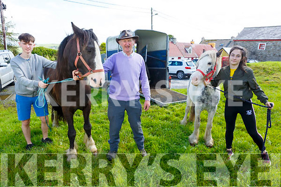 Mark McAuliffe (Abbeyfeale), Anthony McAuliffe (Knocknagoshel) and Ciara Cahill (Knocknagoshel) with their horses at the Knocknagoshel Horse Fair on Friday
