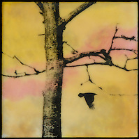 Encaustic mixed media fine art photography of bird and bare tree in yellow sky with orange and pink.