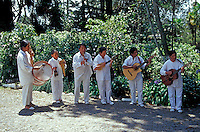 Traditional Ecuadorean musical group performing in Ecuador, South America