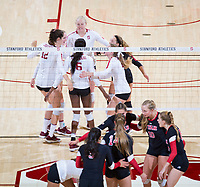 STANFORD, CA - November 4, 2018: Kathryn Plummer, Audriana Fitzmorris, Tami Alade, Meghan McClure, Morgan Hentz, Jenna Gray at Maples Pavilion. No. 2 Stanford Cardinal defeated the Utah Utes 3-0.