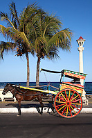 Philippines Calesa or Horse and Buggy - once seen on the streets of virtually every Filipino city they are nowadays only seen in popular tourist areas for a quick ride in scenic areas for visitors, much like rickshaws in other parts of Asia.