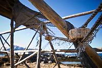 Old netting hangs on unused stockfish drying racks, Vestresand, Lofoten islands, Norway