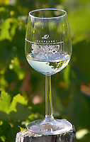 Wine glasses. Despagne Vineyards and Chateaux, Bordeaux, France