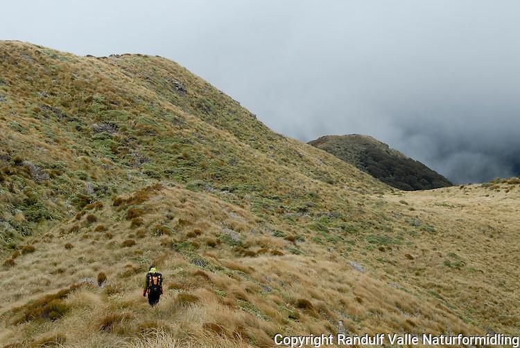 Jente går langs åsrygg. Tåke i bakgrunnen. ---- Girl hiking along a hill on a foggy day