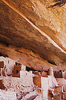 Cliff Palace dwelling, Mesa Verde National Park, Colorado, USA