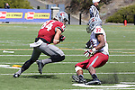 River Cracraft hauls in a pass during the annual Washington State Cougar spring game, the Crimson and Gray game, at Joe Albi Stadium in Spokane, Washington, on April 26, 2014.