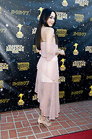 LOS ANGELES - JUN 28:  Aimee Garcia at the 43rd Annual Saturn Awards - Arrivals at the The Castawa on June 28, 2017 in Burbank, CA