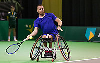 Rotterdam, The Netherlands, 14 Februari 2019, ABNAMRO World Tennis Tournament, Ahoy, Maikel Scheffers (NED)<br /> Photo: www.tennisimages.com/Henk Koster