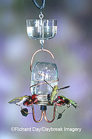 01162-08806 Ruby-throated Hummingbirds (Archilochus colubris) at Perry Canning Jar Feeder with clear nectar protector Shelby Co.  IL