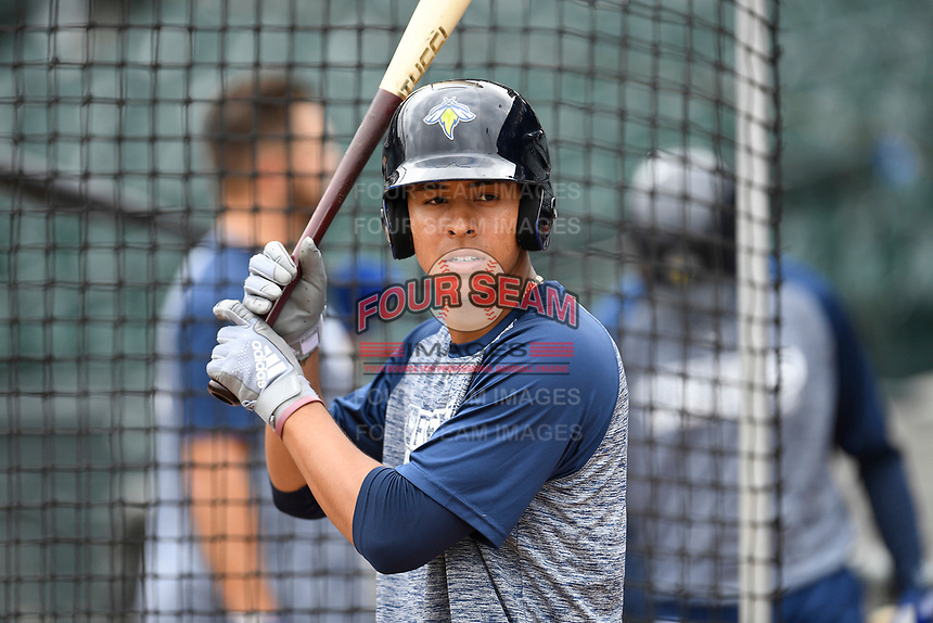 Third baseman Mark Vientos (13) of the Columbia Fireflies works a bunting drill before a game against the Charleston RiverDogs on Friday, April 5, 2019, at Segra Park in Columbia, South Carolina. Charleston won, 6-1. (Tom Priddy/Four Seam Images)
