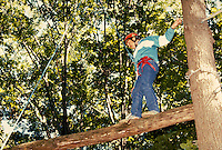 High ropes challenge, horz. MA USA.