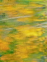 &quot;FALL IMPRESSIONS&quot;<br />