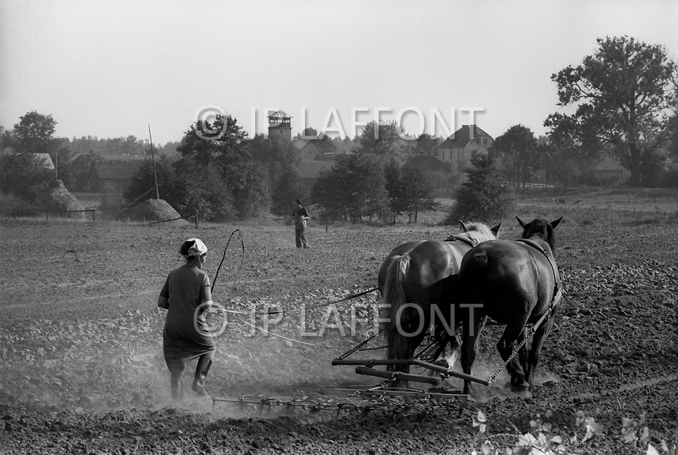 Poland, September, 1981 - Farmers in the Kolno region plow their fields, even on Sunday. The rich soil grows many crops well, though most are taken by the USSR and sent elsewhere, leaving only meager rations behind for the Poles.<br /> Pologne, septembre 1981 &ndash; Les fermiers de Kolno labourent leur champ m&ecirc;me le dimanche. Les r&eacute;coltes furent bonnes et abondantes, mais l&rsquo;URSS a des besoins et redirige ces biens vers d&rsquo;autres directions ne laissant que de maigres stocks &agrave; la population locale.