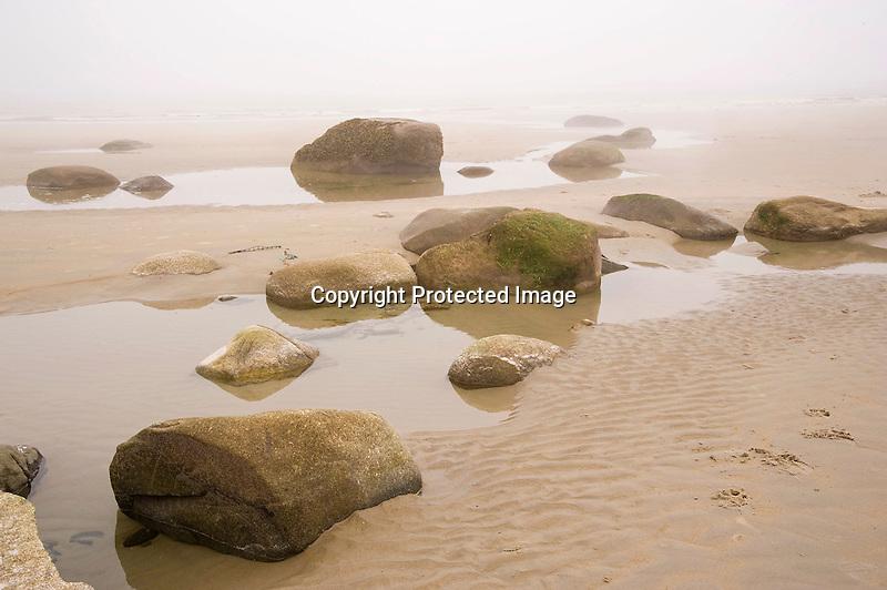 Rocks and Tidal Pools on a Foggy Beach on the Rocky Coast of Maine
