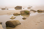Rocks and Tidal Pools on a Foggy Beach on the Rocky Coast of Maine