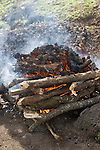 Paradise Taveuni Resort, Taveuni, Fiji; workers prepare the fire and stones for the Fiji Night Lovo, lovo means earth oven, once the stones are heated in the fire, food wrapped in palm fronds is placed on the stones and covered with banana leaves